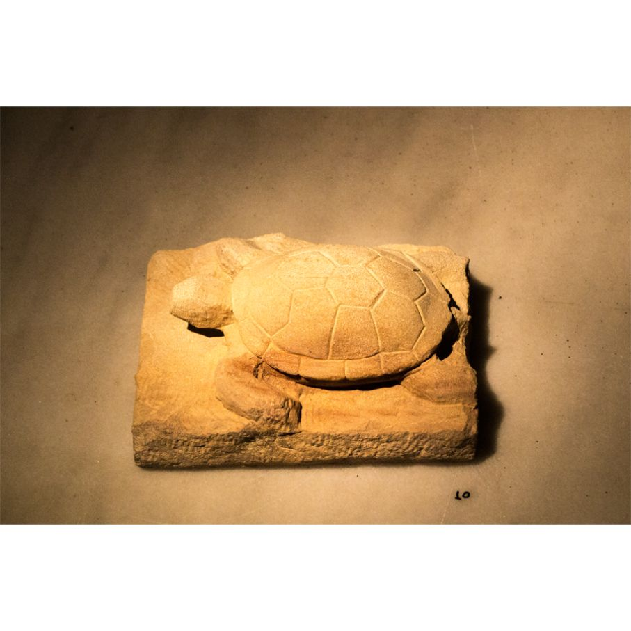 "BRIEF DESCRIPTION. Original marble sculpture of John Bizas created as part of the Greek Marble Initiative, bearing the title ""Turtle"", dimensions 12cm x 15cm x 21cm."